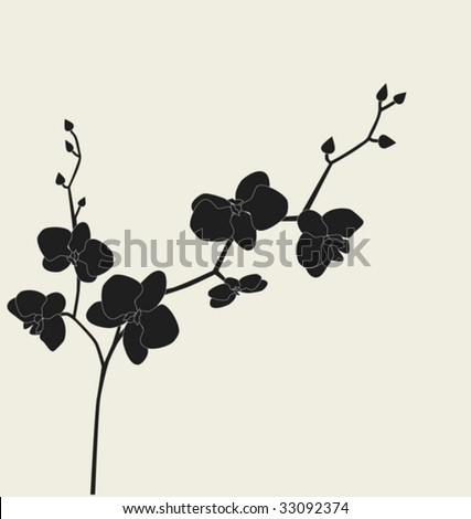 Orchid branch silhouette, vector illustration - stock vector
