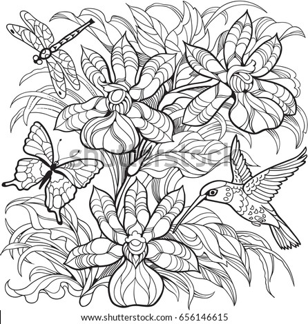 Orchid Flowers Insects And HummingbirdVector Coloring Page For Adult Older Children
