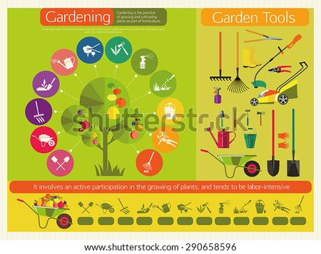 Organic cultivation of fruit trees. Stages planting, digging the earth, irrigation, fertilizer, spraying, weed control, harvesting in the garden. Garden tools. - stock vector