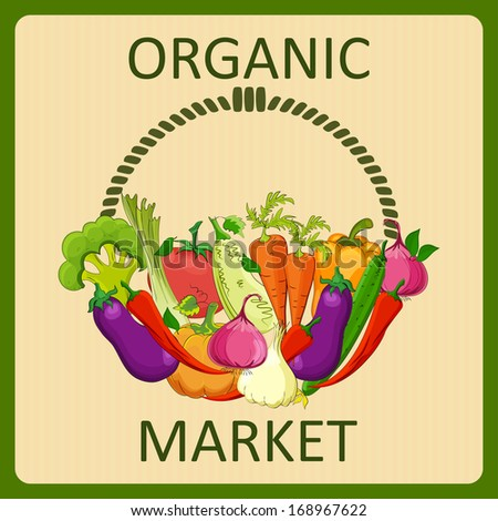 organic food  market vector illustration