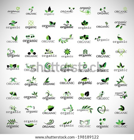 Organic Icons Set - Isolated On Gray Background - Vector Illustration, Graphic Design Editable For Your Design - stock vector