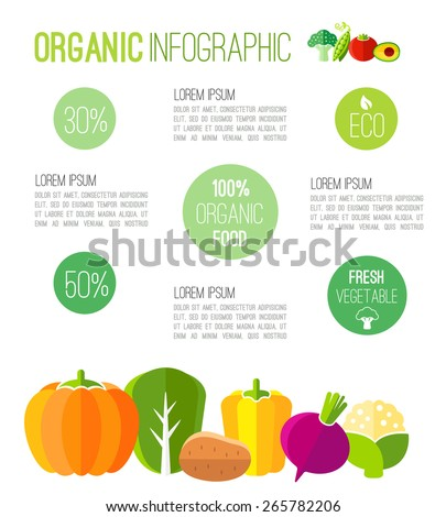 Organic infographic fresh vegetables illustration - stock vector