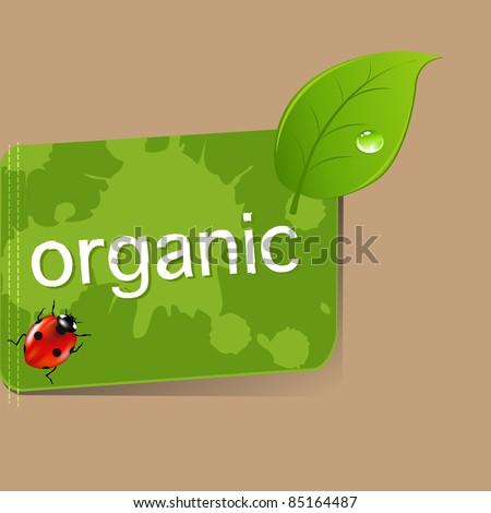 Organic Label, Vector Illustration - stock vector