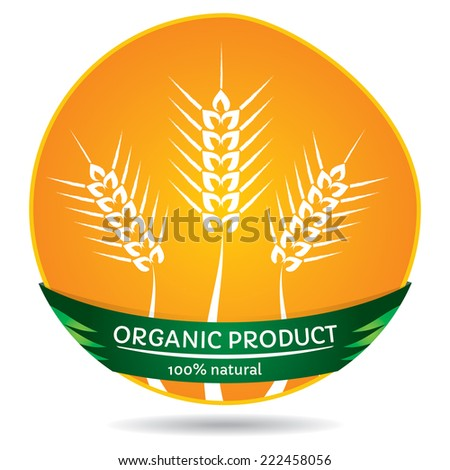 Organic plants, agricultural concept, wheat label illustration - stock vector