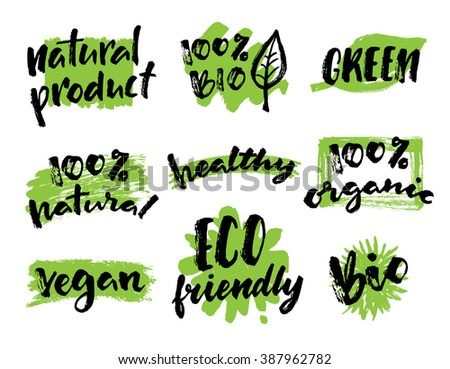 Organic, vegan, natural food hand drawn labels. Organic tags and elements set for  organic products packaging.Vector illustrated bio detox logo. Eco-friendly design. - stock vector
