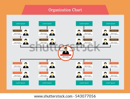Organization Chart Stock Images RoyaltyFree Images  Vectors