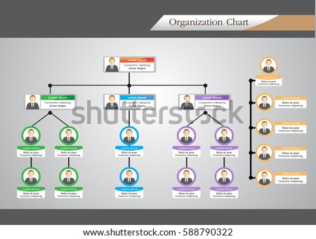 Organization Chart Infographics Stock Vector Hd Royalty Free