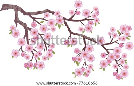 Oriental cherry branch with flowers - stock vector