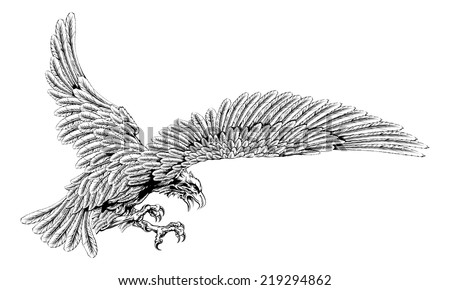 Original eagle illustration of an eagle swooping in for the kill in a vintage style - stock vector