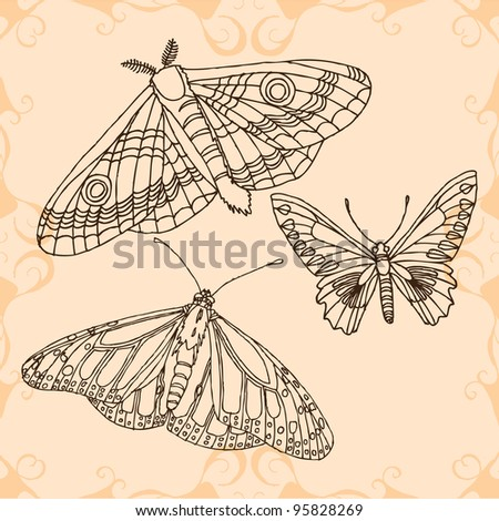 original hand drawing of butterfly-vectorized. Ideal for decoration,decorative,old,pattern,abstract,nature,insects,ornament,postcard or invitation designs - stock vector