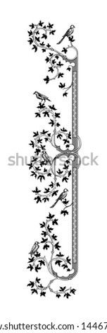 ornament with birds vector
