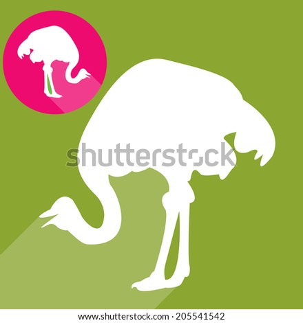 Ostrich silhouette - stock vector