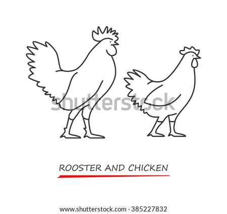 chicken cuts diagram stock vector 155896940