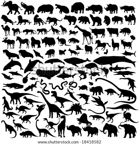 Outline of the animal world