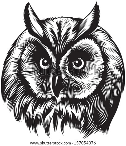 Owl bird head, black and white style  - stock vector