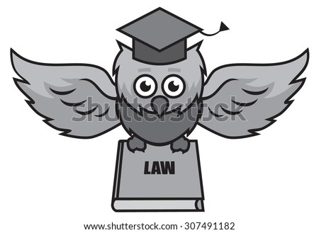 owl lawyer with a book of laws - stock vector