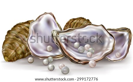 oysters shells with pearls on a white background - stock vector