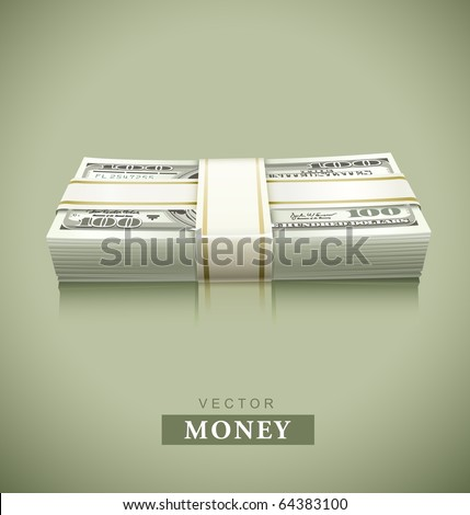 packaged bundle of money dollars vector illustration - stock vector