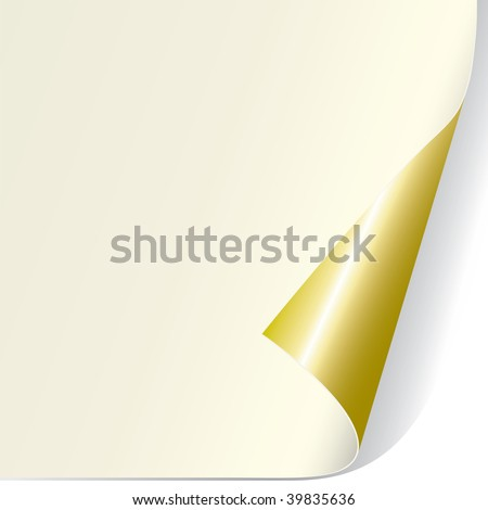 Page Curl (vector). In the gallery also available XXL jpeg version of this image. - stock vector
