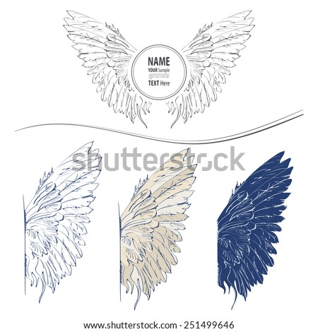Painted wings with space for writing. - stock vector