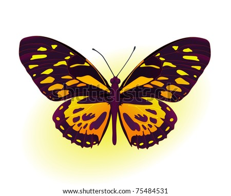 Painting card of beautiful black and yellow butterfly - stock vector