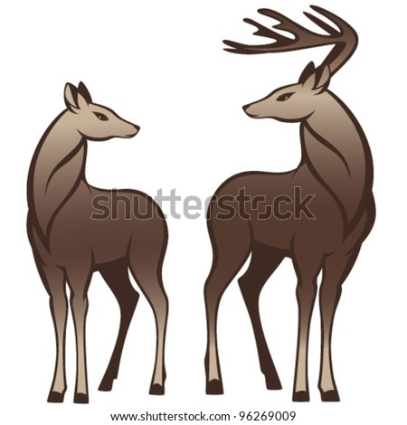 pair of beautiful deers looking at each other - stock vector