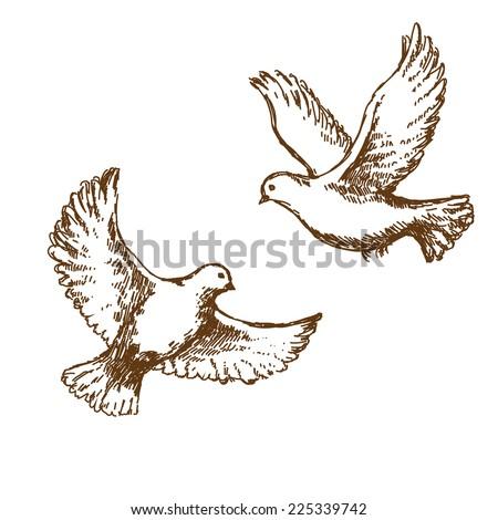 Pair of flying doves. Vector sketch. - stock vector