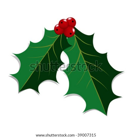 Pair of Holly Leaves and Red Berries against a white background. - stock vector