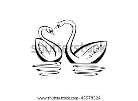 Pair of swans reflected in the water - stock vector