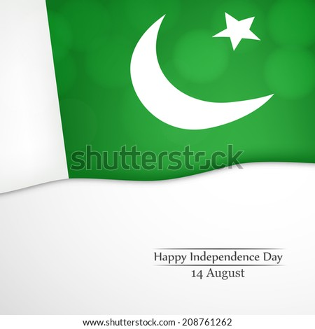 Pakistan's Flag for Independence Day - stock vector