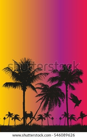 Palm beach graphic design vector art