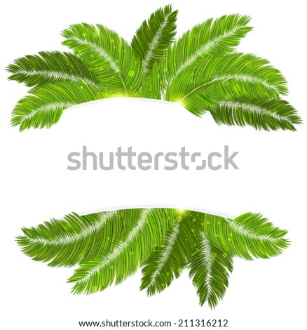 Palm branches with place for text on white background - stock vector