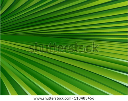 Palm Leaf Pattern 2 - stock vector