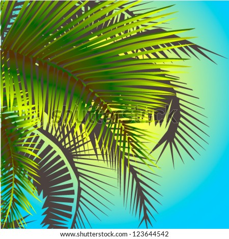 Palm leaves against the sunlight - stock vector