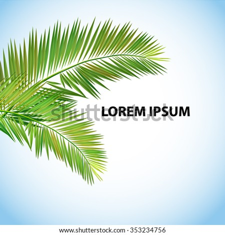 Palm leaves background. Vector - stock vector