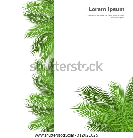 Palm leaves isolated on white background. Vector illustration - stock vector