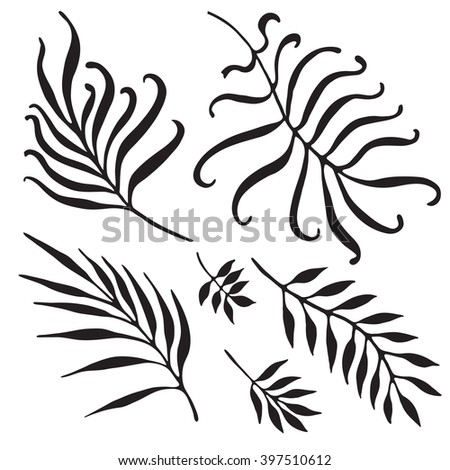 Palm Tree Branches Silhouette. Tropical Leaves and Twigs isolated on white background.  - stock vector