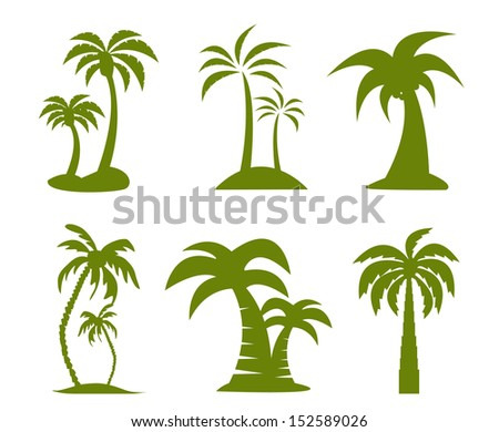 palm tree image - stock vector