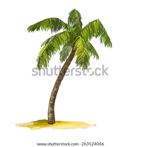palm tree vector illustration  hand drawn  painted watercolor - stock vector