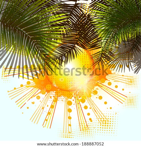 palm trees and sun. Vector - stock vector
