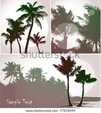 Palm trees in sunset light, vector silhouettes collection - stock vector