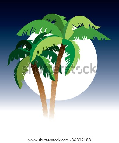 Palm trees, sky and moon in the background - stock vector
