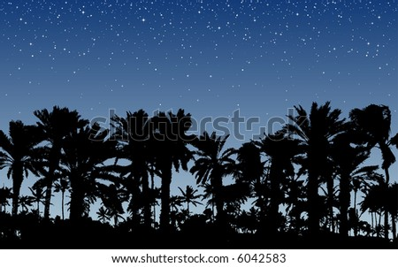 Palm Trees Under Stars - stock vector