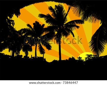 palm trees with sunset vector