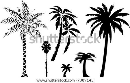 Palms (vector) - stock vector