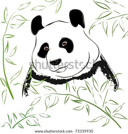 Panda bear. Vector Illustration - stock vector