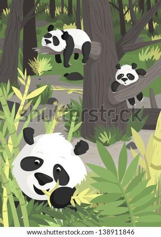 pandas - stock vector