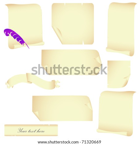 Parchment vector set with feather isolated on white - stock vector