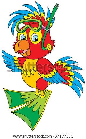 Parrot Diver - stock vector