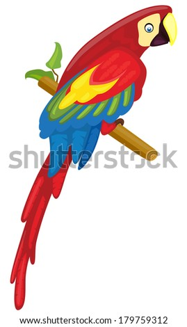 Parrot (Red Macaw) - Vector illustration - stock vector